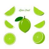 Fruitkalk en rijpe sappige plakken van kalk Stock Foto