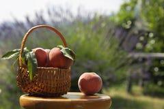 Fruitmand, de hete zomer Stock Afbeelding