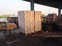 Fruitmarkt Royalty-vrije Stock Afbeelding