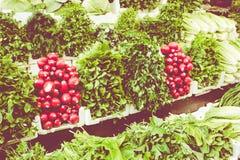 Fruitmarkt in Amman, Jordanië souq stock afbeelding