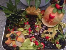 Fruitopia - Raw Fruit Healing Center Cake. I crafted this raw fruit cake in honor of the healing centers everywhere. Take a swim in the blackberry Waters, swing Stock Images