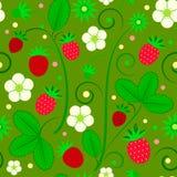 Fruitpatroon Stock Afbeeldingen