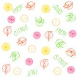 Fruitpatroon met de woorden: vers, citrusvrucht, sap Royalty-vrije Stock Afbeelding