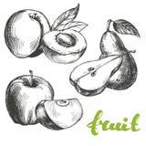 Fruitperzik, appel, schets van de peren de vastgestelde hand getrokken vectorillustratie Royalty-vrije Stock Foto