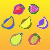 Fruitpictogrammen Stock Fotografie