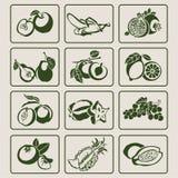 Fruitpictogrammen Royalty-vrije Stock Afbeeldingen