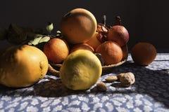 Fruitpompoen, sinaasappelen, en noten stilllife op een zonnig en schaduwrijke lijstdoek Stock Foto