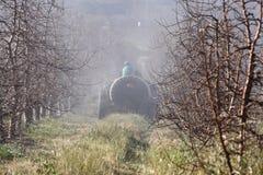 Fruitree spraying Stock Image