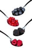 Fruits à baie dans la cuillère Images libres de droits