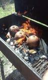 Fruits à pain chaudes du feu Photographie stock