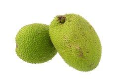 Fruits à pain fraîches entières sur le fond blanc Photo libre de droits