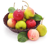 fruits ваза Стоковые Изображения RF