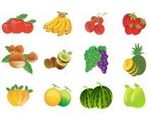 fruits иллюстрация Стоковое Изображение RF