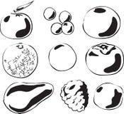 fruits иллюстрация Стоковое фото RF