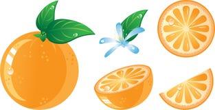 fruits комплект померанца иконы Стоковое Изображение RF