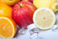 fruits ледисто стоковое изображение