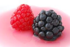 fruits лето Стоковая Фотография RF