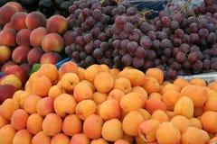 fruits лето Стоковые Изображения