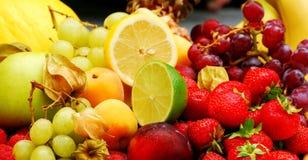 fruits лето Стоковое Изображение