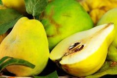 fruits ломтик айвы Стоковое Фото