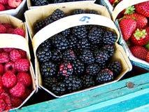 fruits некоторое Стоковые Изображения RF