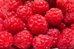 fruits поленика Стоковое фото RF