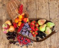 fruits сезонно стоковое изображение