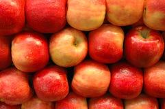 fruits серия Стоковые Изображения RF