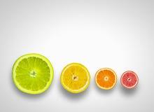 fruits сочно Стоковая Фотография RF
