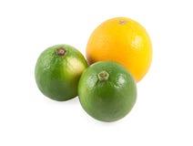 fruits тропическо стоковое изображение rf