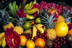 fruits тропическо Стоковые Изображения RF