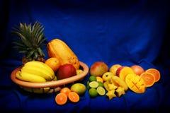 fruits тропическо Стоковое фото RF