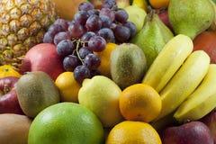 Fruits цветастый смешанный ассортимент Стоковые Изображения RF