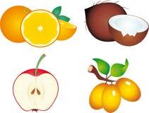 Fruits royalty free illustration