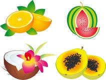 Fruits. Illustration, isolated on a white background Royalty Free Stock Image