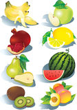 Fruits. Stock Image