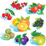Fruits. Stock Photo