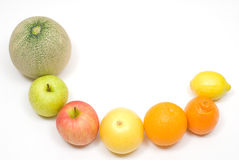 Fruits. Row of citrus and various fruits Stock Image