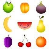 Fruits. Set of fruits icons on the white background Stock Image