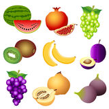 Fruits. Set of fruits icons and  illustration Royalty Free Stock Images