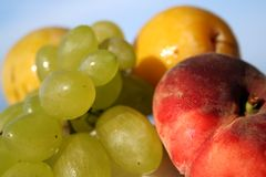 Fruits 2. Grapes, plums and other fruits under the sun light Royalty Free Stock Image