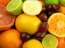 Fruits. Lemons, grapes, limes, oranges and grapefruit Royalty Free Stock Image