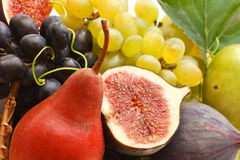 Fruits. Stock Image