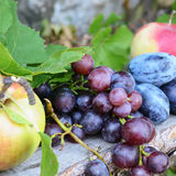 Fruits. Fresh organic fruit on wooden bench Stock Image