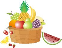 Fruits. An image showing different types of fruits Royalty Free Stock Photos