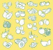 Fruits Illustration Stock