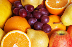 Free Fruits Stock Images - 4871934