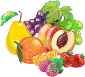 Fruits Photographie stock libre de droits