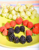 Fruits 11 Photos libres de droits