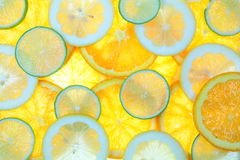 Fruits. Collage from fresh and healthy citrus fruits Royalty Free Stock Photos